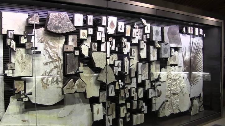 Wyoming-work-and-travel-museum