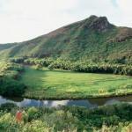 wailua-river