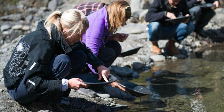 gold-panning--seward-alaska-work-and-travel